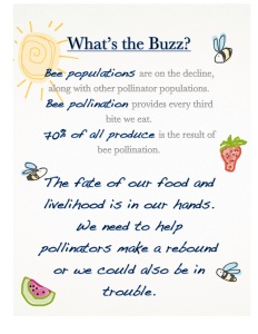 Why Buzz for Bees JPG