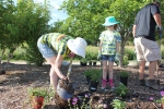 My daughter, Kailey, was taking lessons from me about planting.